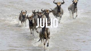 Viajar en Julio